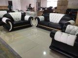 Moderner eindeutiger Entwurfs-Frankreich-Luxuxmöbel-Leder-Sofa