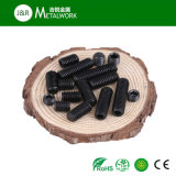 Schwarze Oxid-Grad-Kohlenstoffstahl-Made-Einstellschraube 12.9 (DIN913 DIN915)
