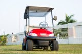Großverkauf 2 Seater elektrisches Golf-Auto mit Eis-Kasten