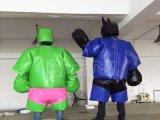 2016 جديدة تصميم قابل للنفخ [سومو] تصارع دعوى
