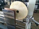 Stationärer Plastikbeutel, der Maschine herstellt