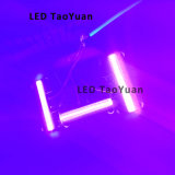 Source UV 395nm 60W d'éclairage LED
