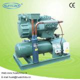 Unità di condensazione raffreddata aria della cella frigorifera di Bitzer
