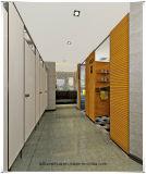 Дверь кабины ливня водоустойчивого ламината компакта HPL общественная