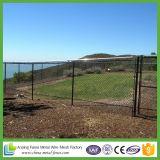 le maillon de chaîne galvanisé d'IMMERSION chaude de maille de 5X5cm clôture le coût