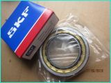 Gaoyuan chinois 6000zz à 6205zz Series Deep Groove Ball Bearing pour Motorcycle