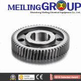 Factory Supply Forged Steel Geval Gear