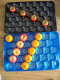 Bandejas plásticas disponibles al por mayor globales de la categoría alimenticia para el empaquetado fresco de la fruta y verdura