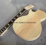 Semi полая гитара Les Lp DIY отверстия f двойника тела