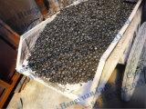 생물 자원 목탄 탄화 로 또는 기계를 만드는 경재 목탄
