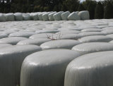 folha branca fundida da ensilagem da cor de 500mm*1800m