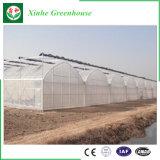 低価格の販売のための農業の太陽フィルムの温室