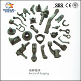 High Quality OEM Special Customized Kinds of Forging Parts
