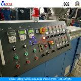 最も新しい低価格ペット松の木の針の突き出る機械装置