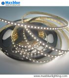 DC12V/24V 120LEDs/M2 Chips dans One Bicolor 3528 SMD DEL Strip
