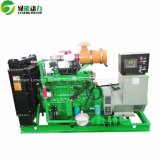 Generator des LPG-Generator-auswechselbarer Erdgas-100-300kw von der China-Fertigung
