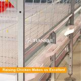 Engrais automatique de bâti de H retirant des cages de batterie pour des poulets à rôtir
