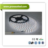 높은 Bright Project Quality Waterproof RGBW 4in1 LED Lighting Strip
