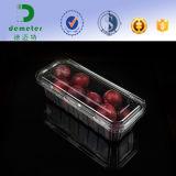 Freie Wegwerfplastikblasen-verpackenkasten-Behälter für Obst und Gemüse