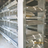 يشبع آليّة طبقة قفص لأنّ مزرعة حديثة