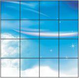 Indicatore luminoso 600*600*11 dello schermo piatto di RoHS LED del Ce del comitato di umore