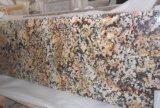 中国の花こう岩の平板かカウンタートップまたはVanitityの上