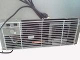congelatore di congelamento dritto del gelato della vetrina della visualizzazione del gelato 318L (DBQ-318F)