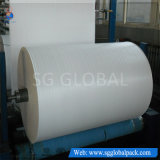 China-Hersteller-preiswertes Polypropylen gesponnenes Gewebe 40-230GSM