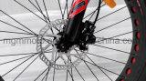 [هرلي] شاطئ طرّاد إطار العجلة سمين 26 بوصة ثلج جبل درّاجة كهربائيّ