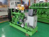 Cummins-Lebendmasse-Gas-Generator 100kw mit Qualität und angemessenem Preis