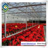 Einzelne Überspannungs-landwirtschaftliches Gewächshaus für Gurke