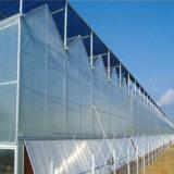 2017新しい高品質の現代温室