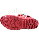 新しく熱い女性のセメントの靴