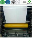 Nahrungsmittelgrad-PET beschichtetes Verpackungs-Papier mit Bescheinigung