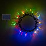 Lumière décorative solaire colorée multi de chaîne de caractères de 30 de DEL lumières d'insecte