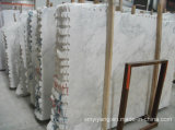 White do leste Stone Marble para a bancada, Floor Tile