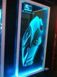 Машина маркировки лазера лазера 2D/3D Zhejiang святейшая для кристалла или стекла