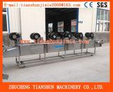 Obst- und Gemüsetrocknende Maschine/Entwässerungsmittel Tsgf-60