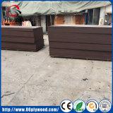O Poplar/vidoeiro/película marinha da madeira compensada/testa enfrentaram a madeira compensada para a construção