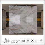 Nuevo mármol blanco hermoso de Arabescato Venato para los azulejos de la cocina/del piso/de la pared del cuarto de baño