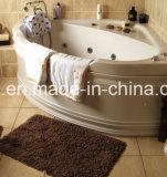 Мягкое Shaggy размещение половика под циновкой синеля ванной комнаты софы кровати