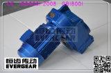 Reductor helicoidal del engranaje del eje serie-paralelo de F