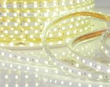 Natale Light 12V/24V LED Light LED String Light