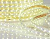 Luz clara clara da corda do diodo emissor de luz do diodo emissor de luz 12V/24V de ETL