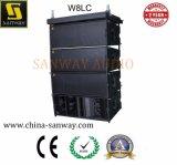 W8LCの三Ampedラインアレイサウンド・システム、専門ラインアレイ