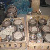 PET Plastikrohr-Strangpresßling-Produktion, die Zeile bildet