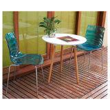 Прозрачное место при нога металла обедая стул