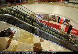 Escalator à la maison résidentiel utilisé de prix usine
