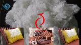 Poliestere Staple Fiber (7D/15D 64mm HCS)