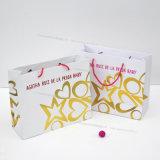 Sacos de papel laminados, 2016 estilos elegantes, apropriados para a compra/anunciando finalidades
